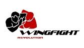 WingFight klein1